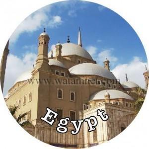 وفد مصر يدعو لتنشيط السياحة بؤتمر العمل بجنيف 3